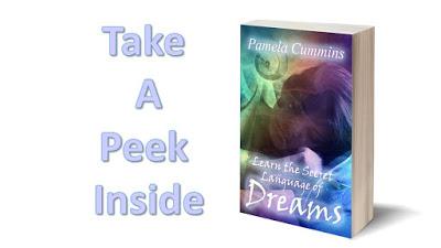 take-a-peek-learn-the-secret-language-of-dreams-book