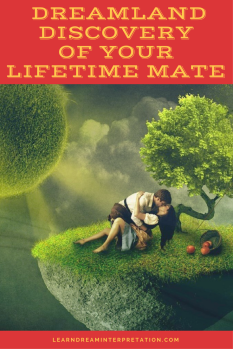 Dreamland Discovery of Your Lifetime Mate