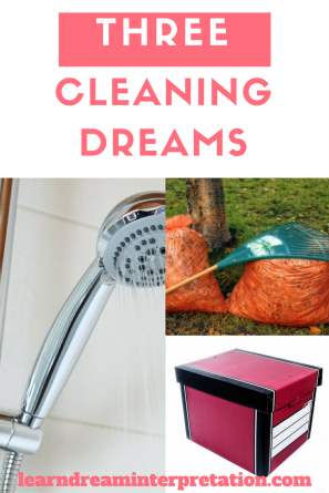 Three Cleaning Dreams